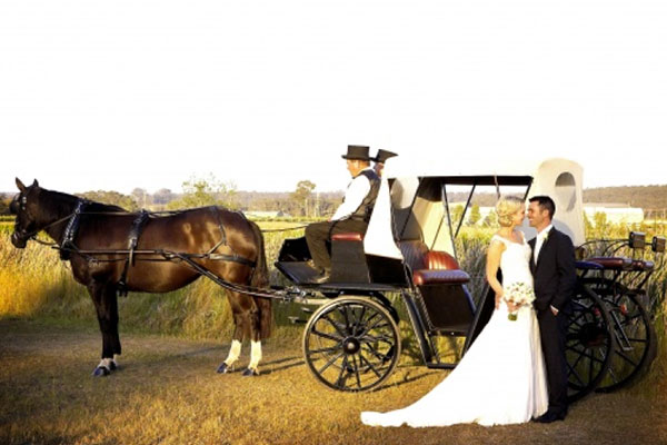 hunter-valley-wedding-carriages.jpg